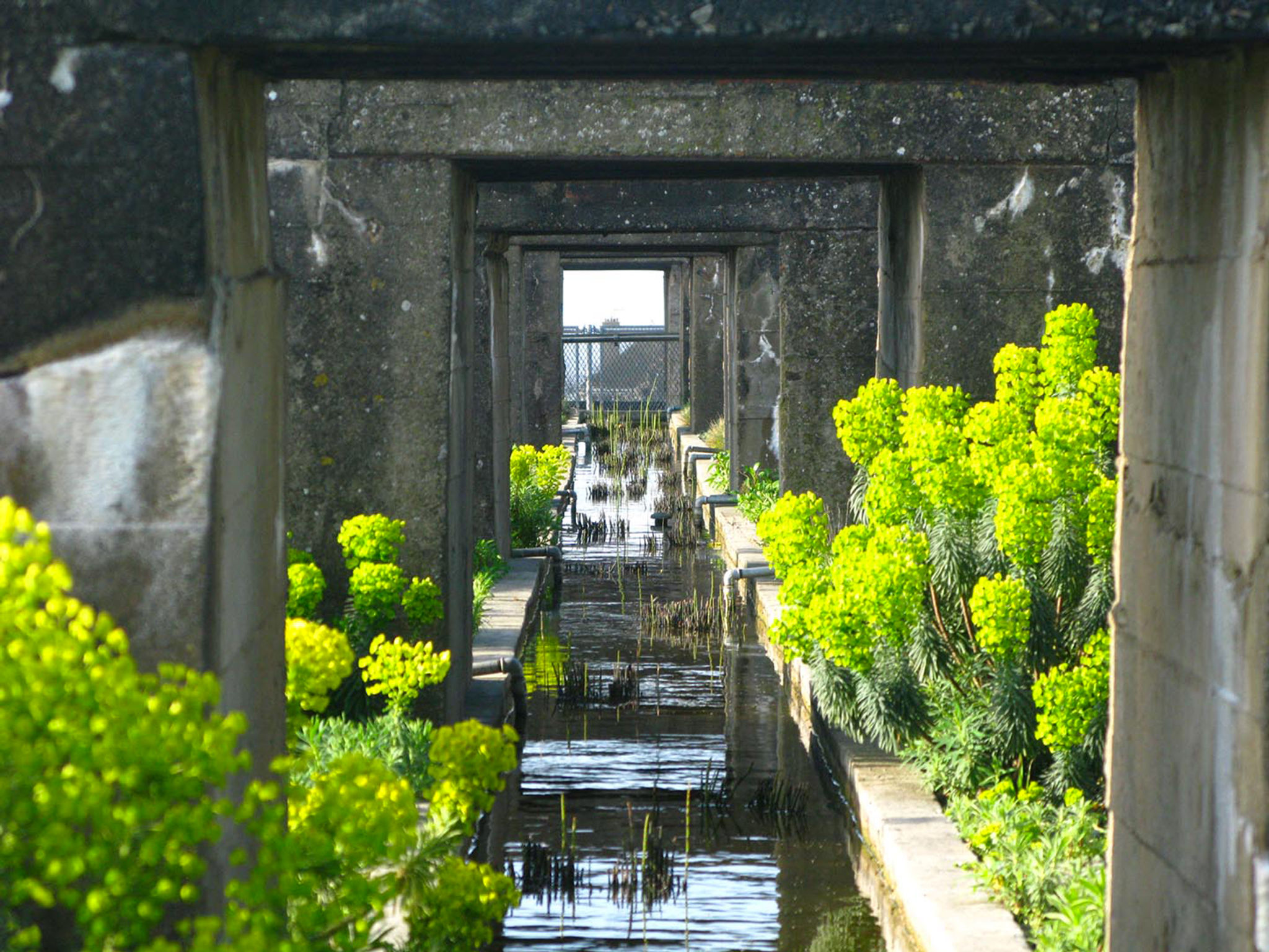 gilles clement coloco saint nazaire toit base sous-marine paysagiste jardinier