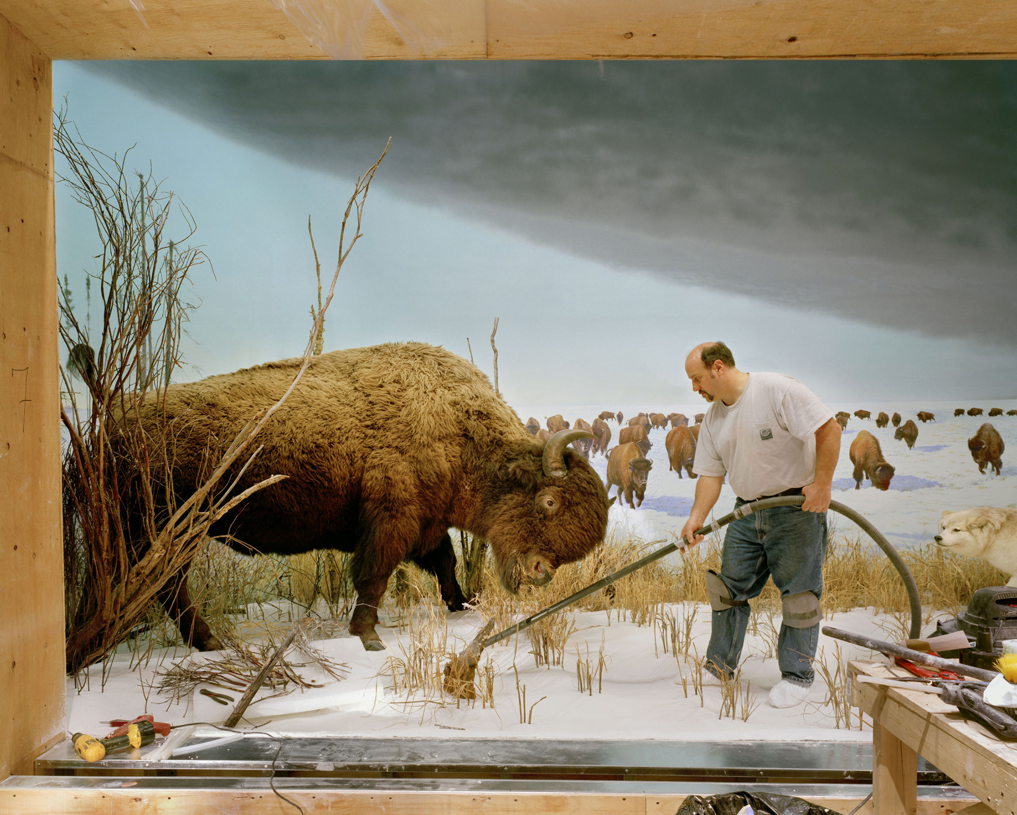 Richard Barnes Man with buffalo