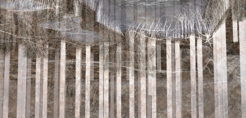 anita berrizbeitia landscape urban mediator