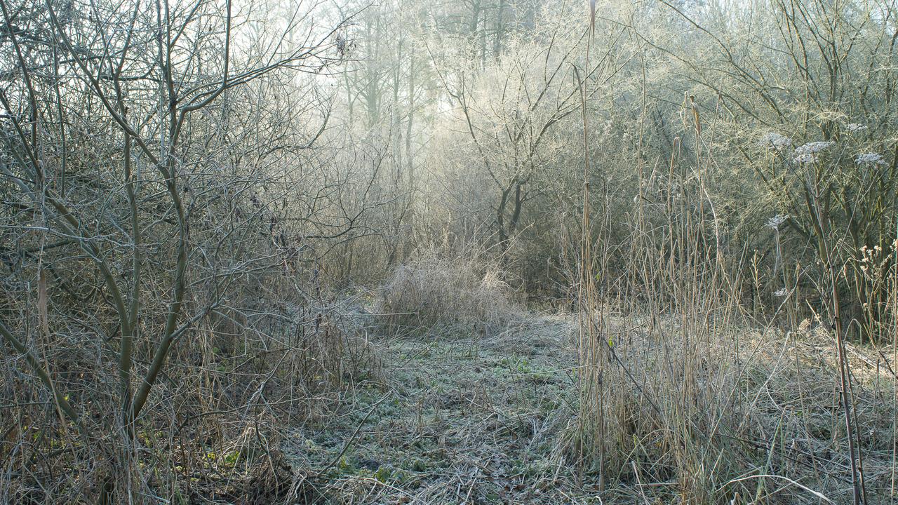 gilles clement yann monel third landscape gardener