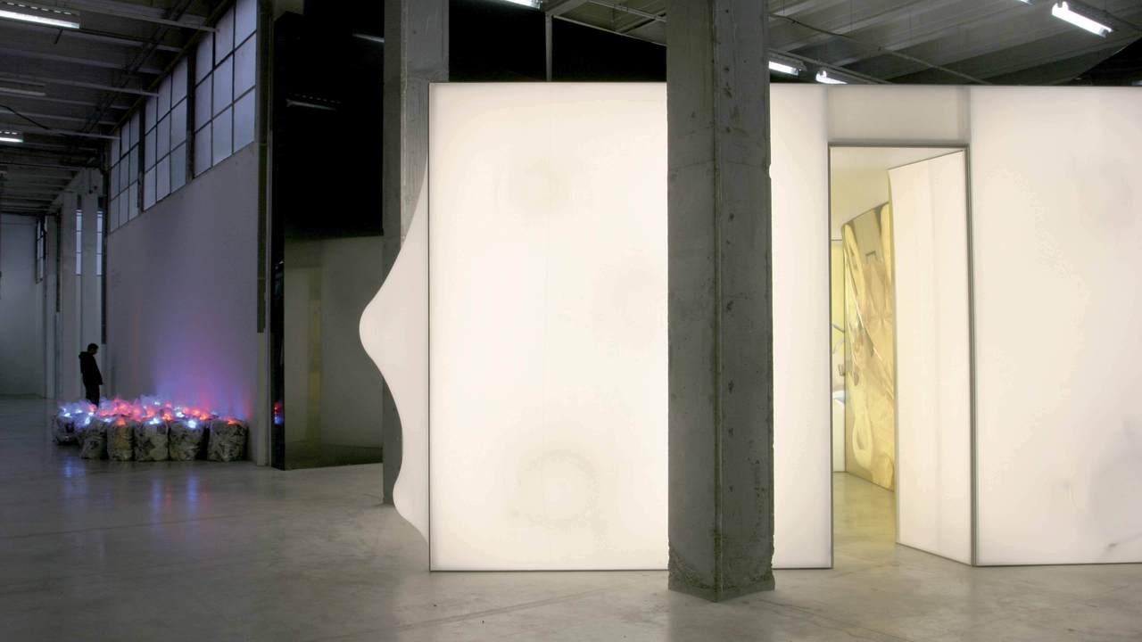 pièce lumineuse PCA-STREAM Orlan Palais de Tokyo organic metamorphosis surgery