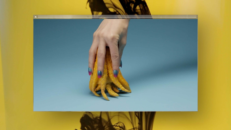hand tentacles  Camille Henrot   Kamel Mennour   Bourriaud  Stream 03  PCA-Stream