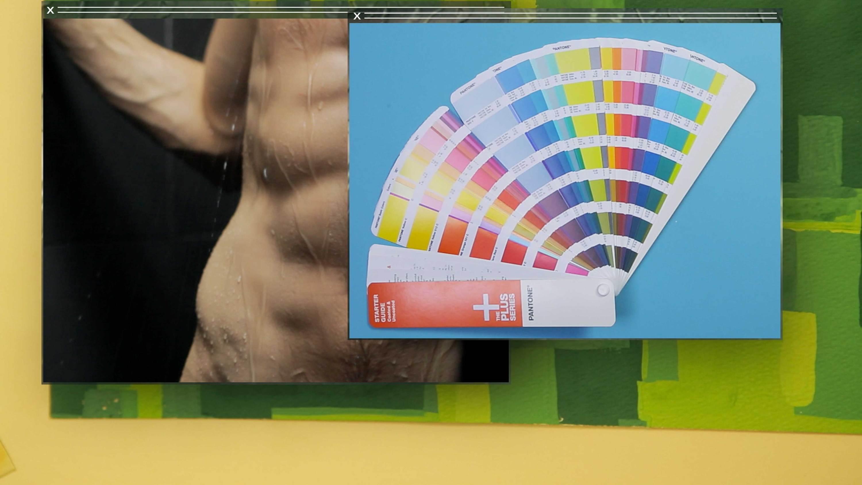 color Camille Henrot   Kamel Mennour   Bourriaud  Stream 03  PCA-Stream