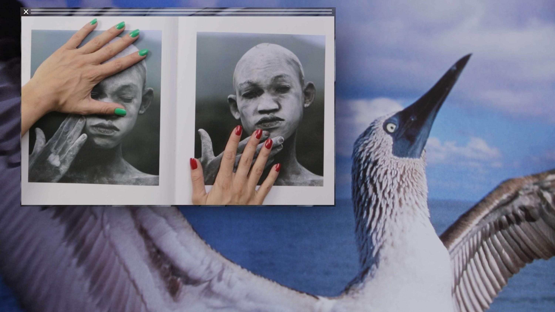 african bird hands Camille Henrot  Kamel Mennour  Nicolas Bourriaud   Stream 03  PCA-Stream